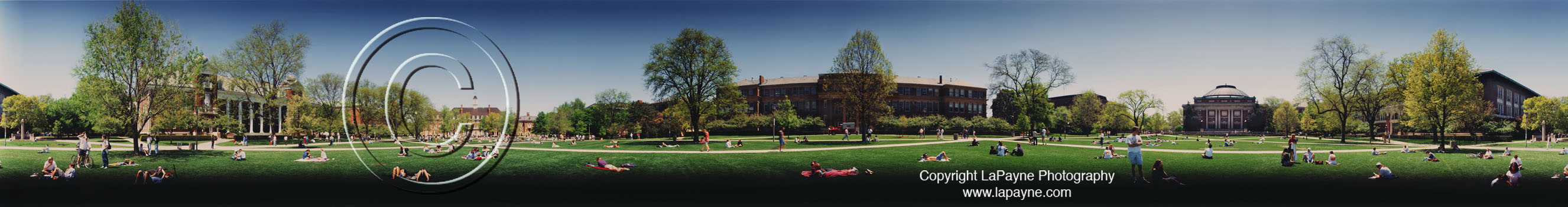Solar Eclipse on the University of Illinois Quad 1995