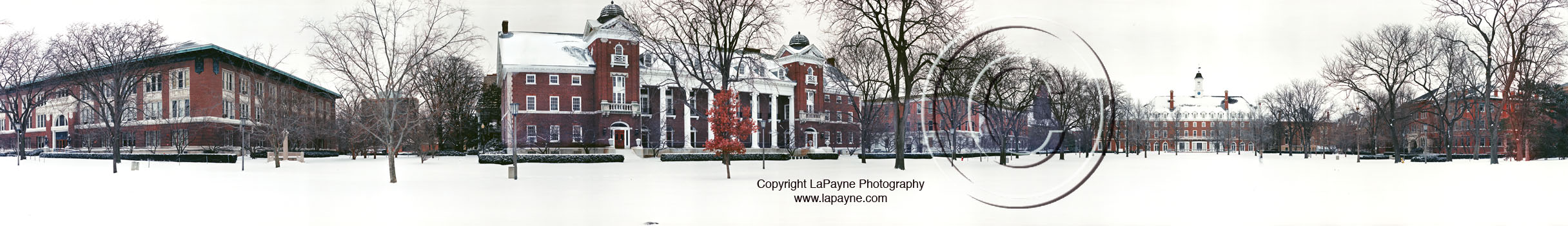 U of I Quad Covered in Snow