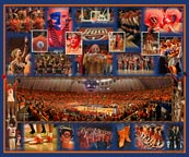 "Illini Fan Composite with ""Paint The Hall Orange"" Panoramic Photograph"