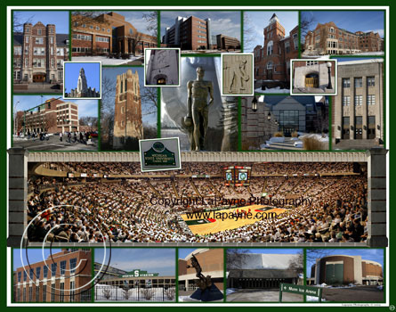 Michigan State University Composite | Basketball