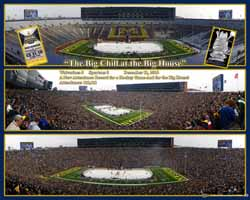 Michigan Hockey at The Big House