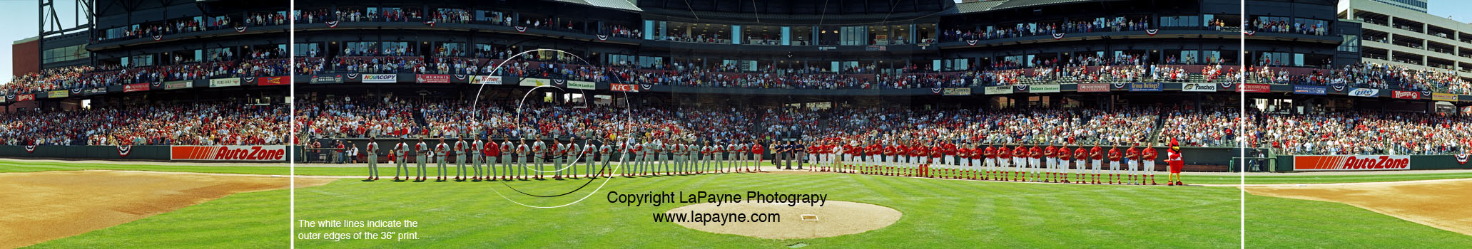 Memphis Redbirds National Anthem Panorama