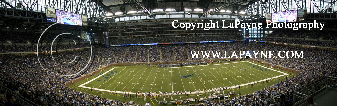 Lions at Ford Field - Mid Field Shot